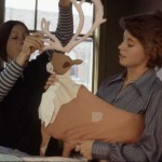 Two women assemble a caribou for Joyce Wieland's Caribou quilt, 1977.