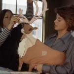 Two women assemble a caribou for Joyce Wieland's Caribou quilt, 1977.